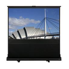 Напольный широкоформатный экран Epson (ELPSC24)